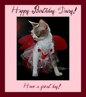 birthday-card-cat-blogosphere