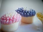 Marths Sterart's Cupcakes 2