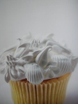 Marths Sterart's Cupcakes 5