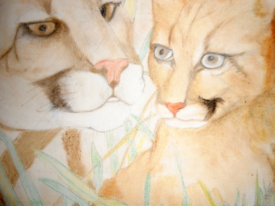 Cougar 'n Baby Original Art by Theresa