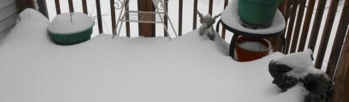 cropped-first-snow-dec-2013.jpg